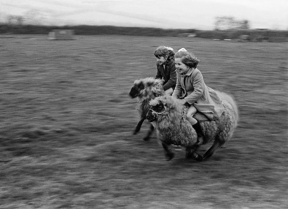 Фотограф Джон Дрисдейл 3