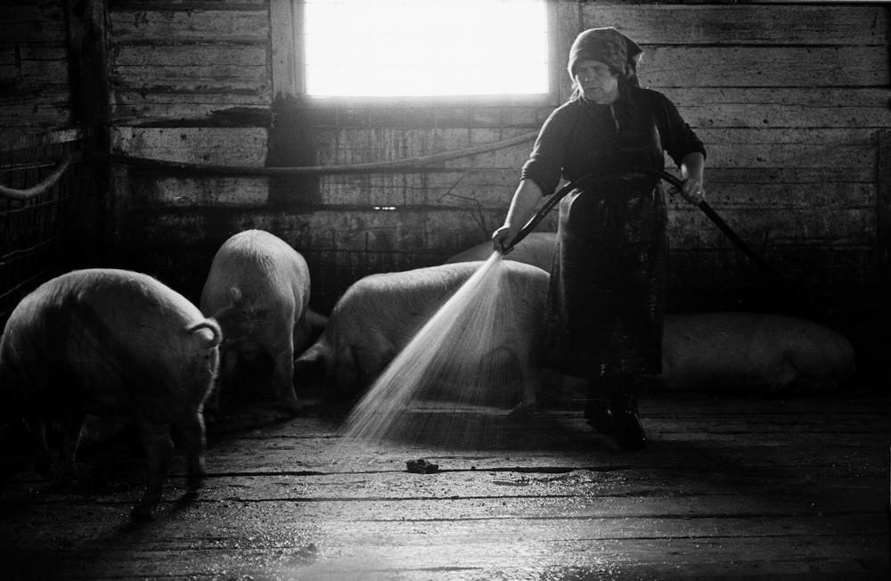 Социалистическая реальность в документальных фотографиях Владимира Воробьева 47