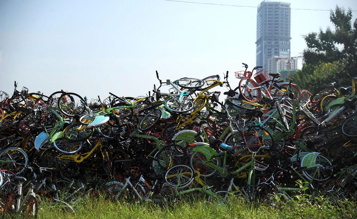 Велопрокат в Китае. Фоторепортаж 18