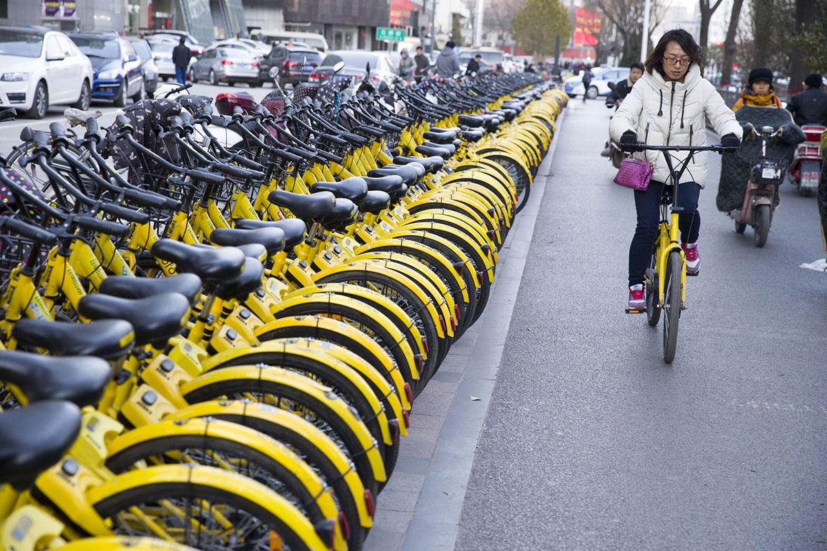 Велопрокат в Китае. Фоторепортаж 19