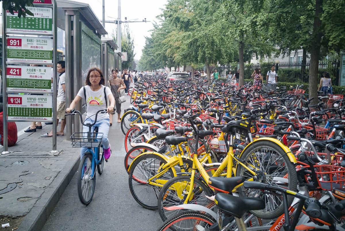 Велопрокат в Китае. Фоторепортаж 22
