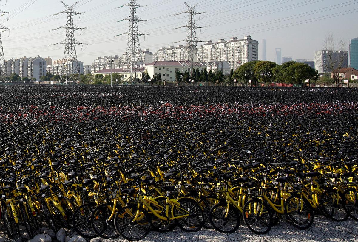 Велопрокат в Китае. Фоторепортаж 30