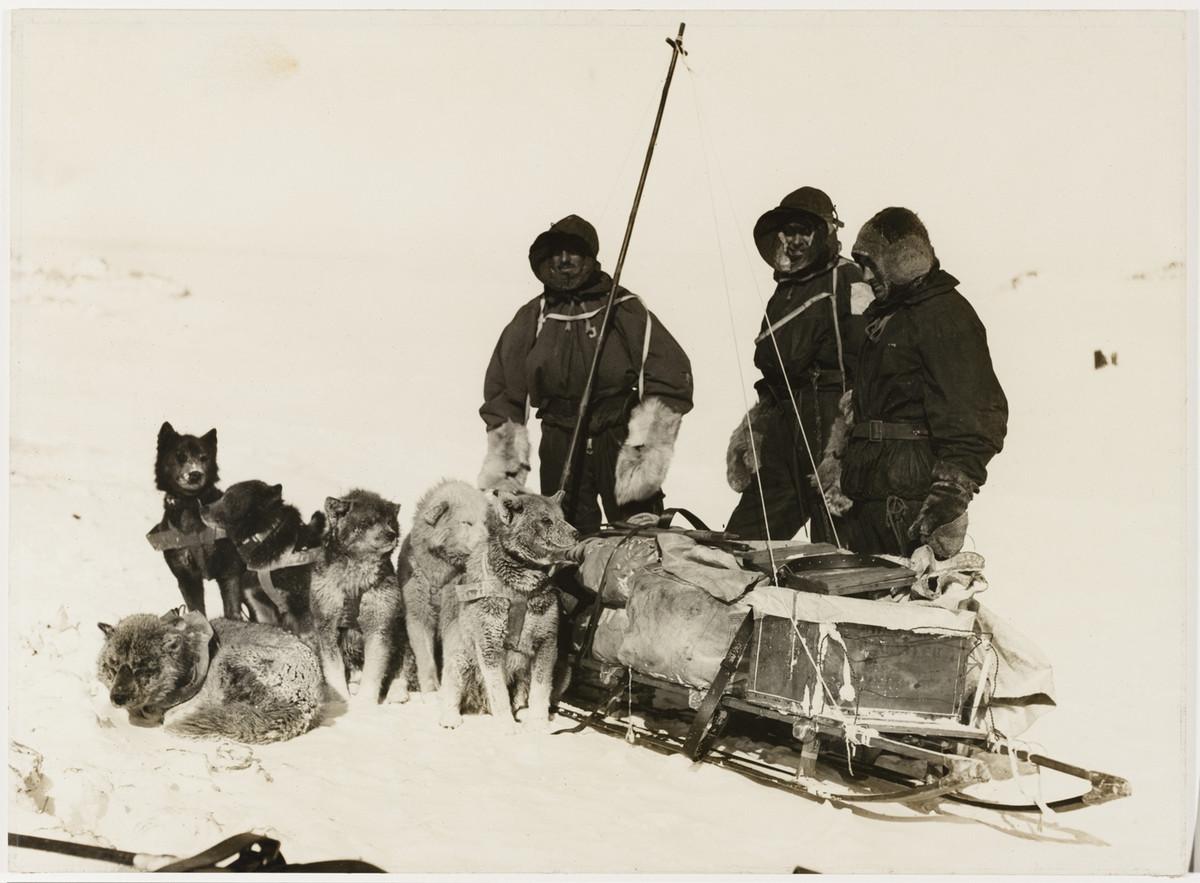 Первая Австралийская антарктическая экспедиция в фотографиях Фрэнка Хёрли 1911-1914 14