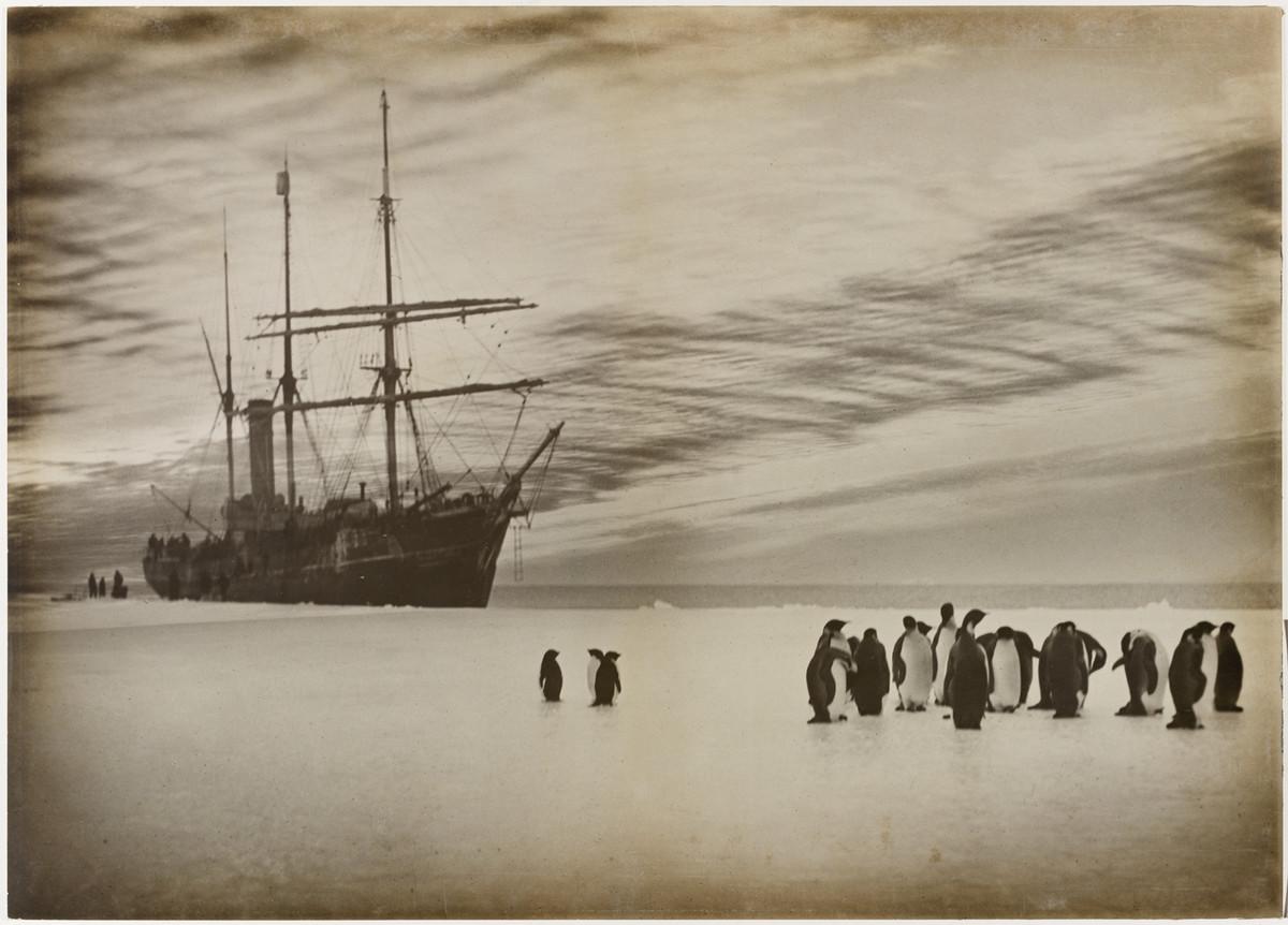 Первая Австралийская антарктическая экспедиция в фотографиях Фрэнка Хёрли 1911-1914 16