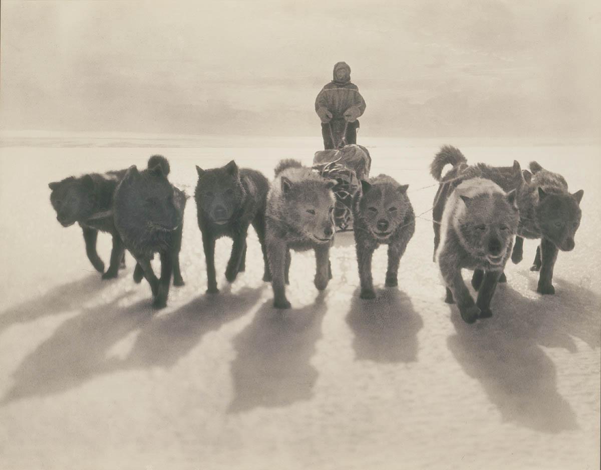Первая Австралийская антарктическая экспедиция в фотографиях Фрэнка Хёрли 1911-1914 56