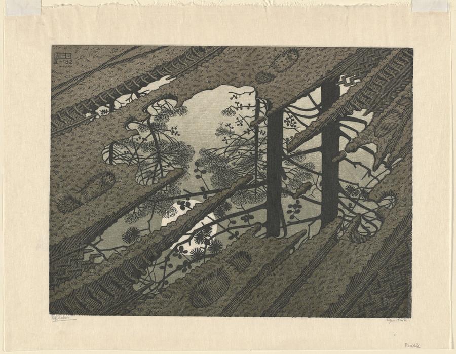 Онлайн-архив: оптические иллюзии и невозможные гравюры Маурица Эшера 1