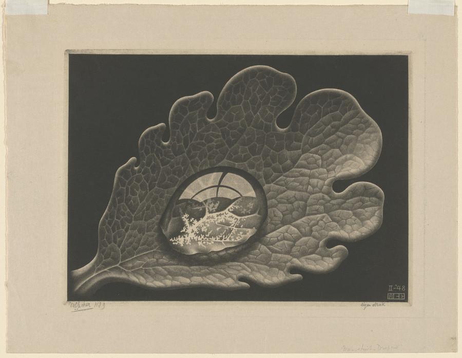 Онлайн-архив: оптические иллюзии и невозможные гравюры Маурица Эшера 4