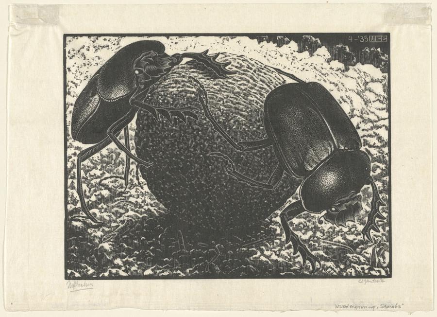 Онлайн-архив: оптические иллюзии и невозможные гравюры Маурица Эшера 6