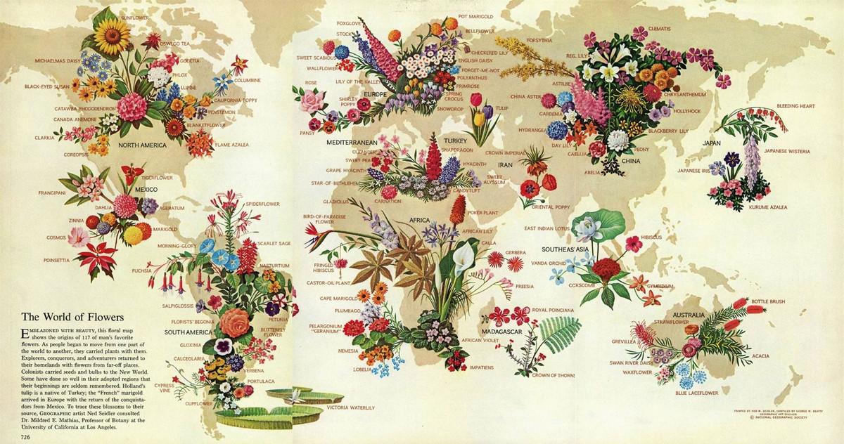 National Geographic оцифровал свою коллекцию карт за 130 лет. От карт звёзд до океанского дна  7
