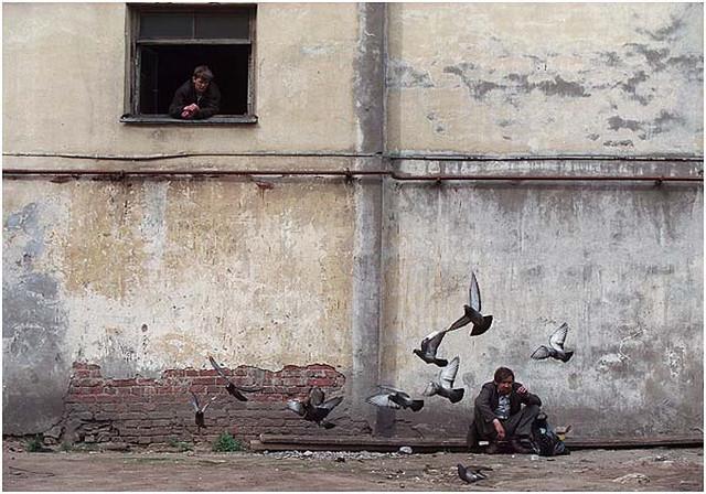 Фотожурналист Сергей Максимишин – мастер фотоисторий  15
