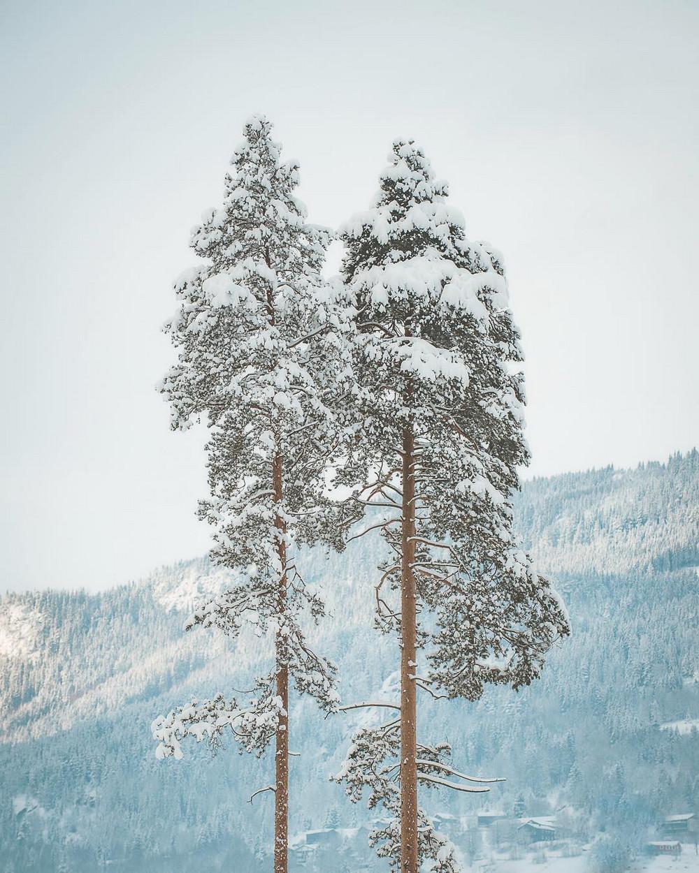 fotografii norvegiji 21