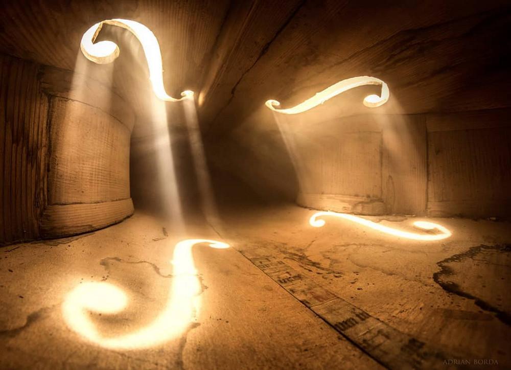 Волшебные фотографии, снятые внутри виолончели и других музыкальных инструментов 6