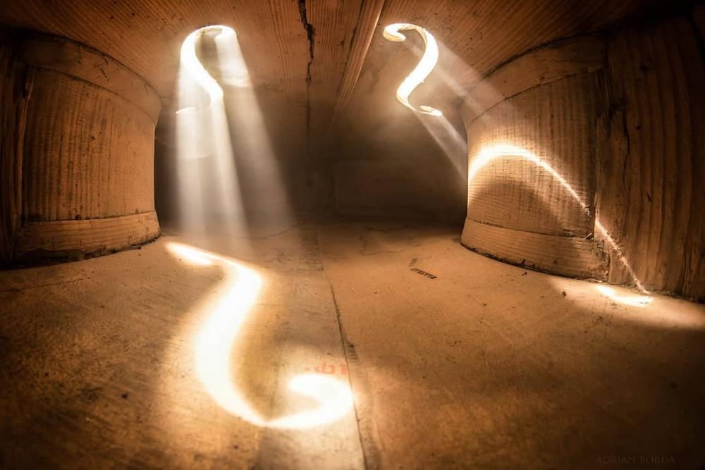 Волшебные фотографии, снятые внутри виолончели и других музыкальных инструментов 7