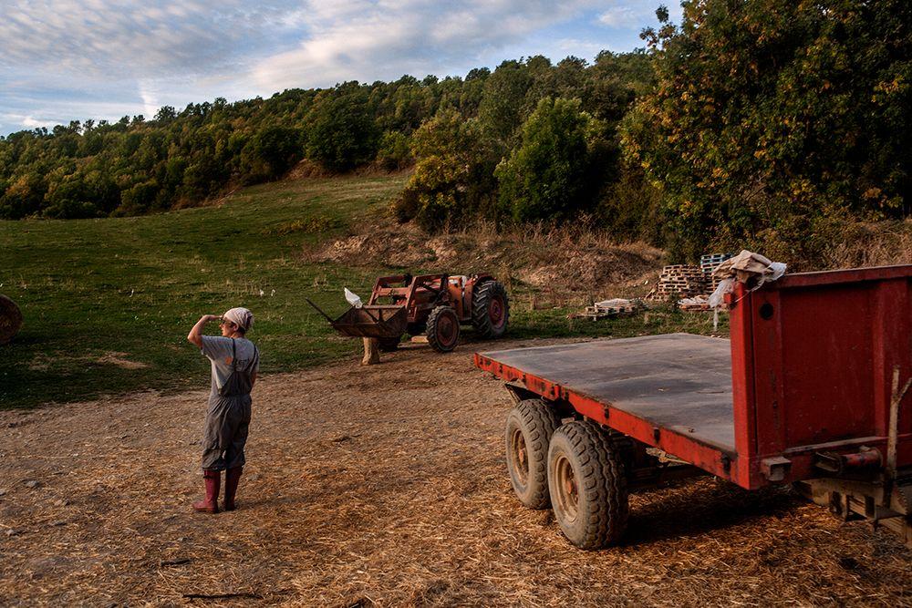 «Школа пастухов» – проект испанского фотографа Джоана Альвадо 12