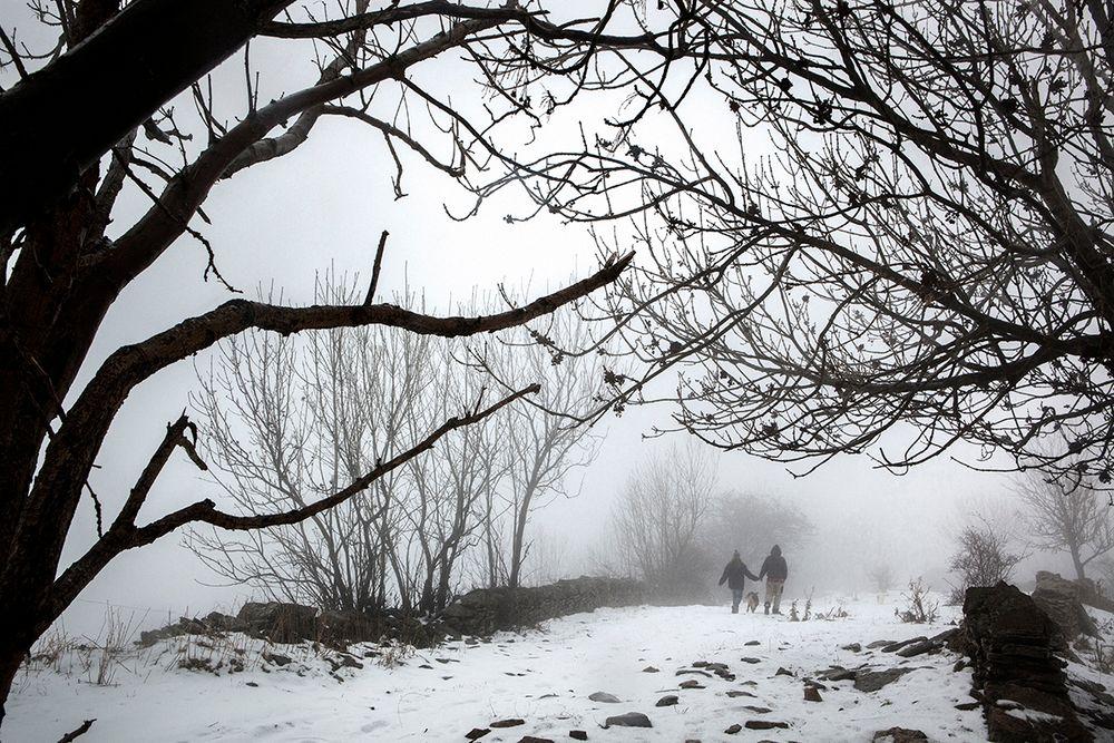 «Школа пастухов» – проект испанского фотографа Джоана Альвадо 16