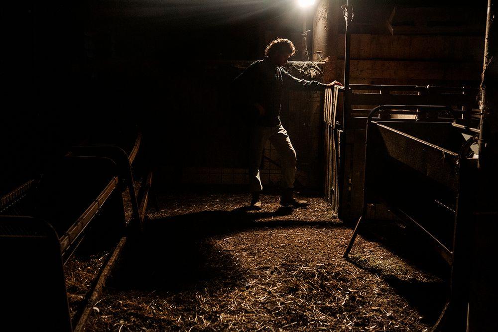 «Школа пастухов» – проект испанского фотографа Джоана Альвадо 28