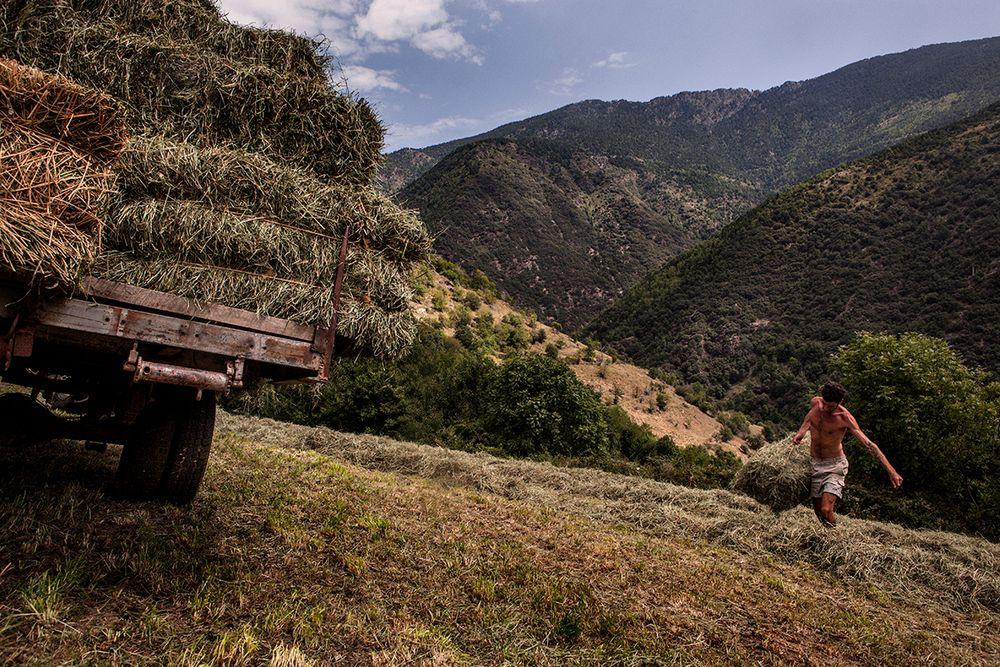 «Школа пастухов» – проект испанского фотографа Джоана Альвадо 4