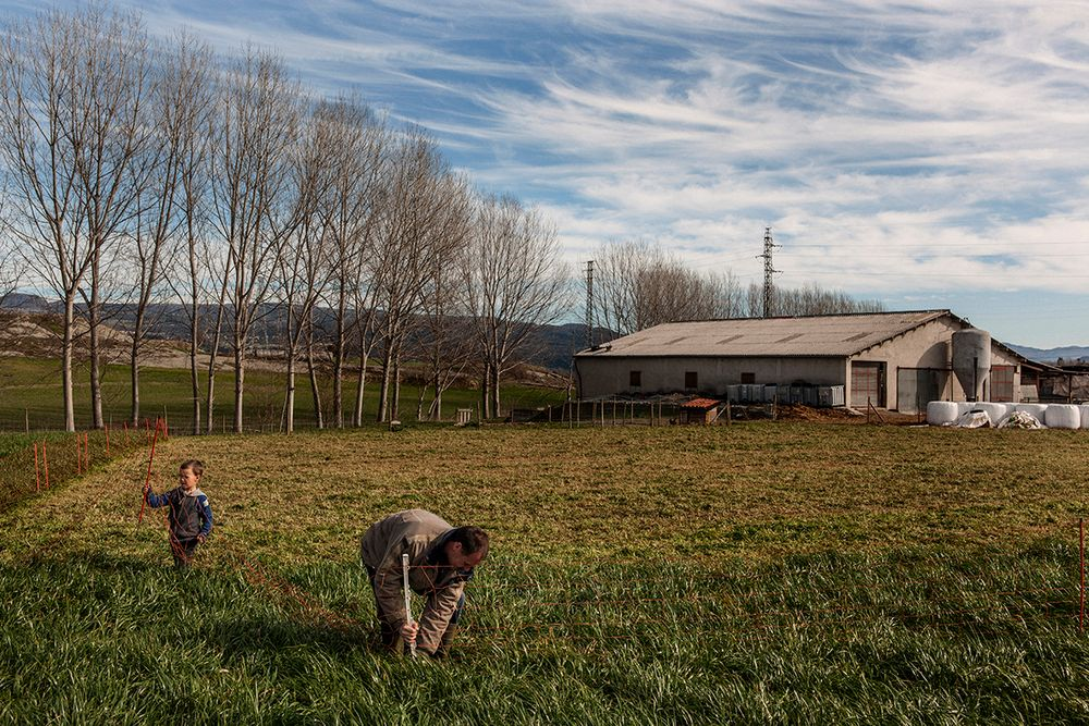 «Школа пастухов» – проект испанского фотографа Джоана Альвадо 9