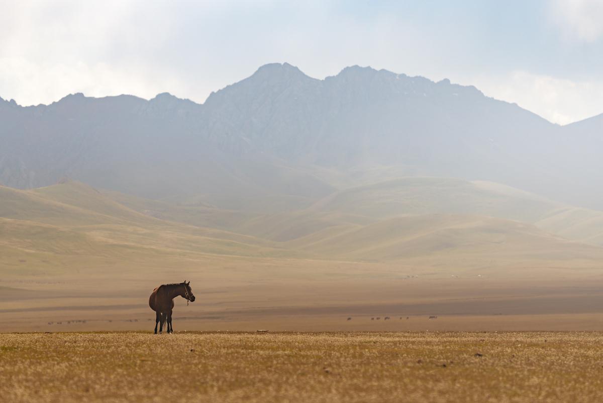 Пейзажи Киргизии, потрясшие нидерландского фотографа Альберта Дроса 23