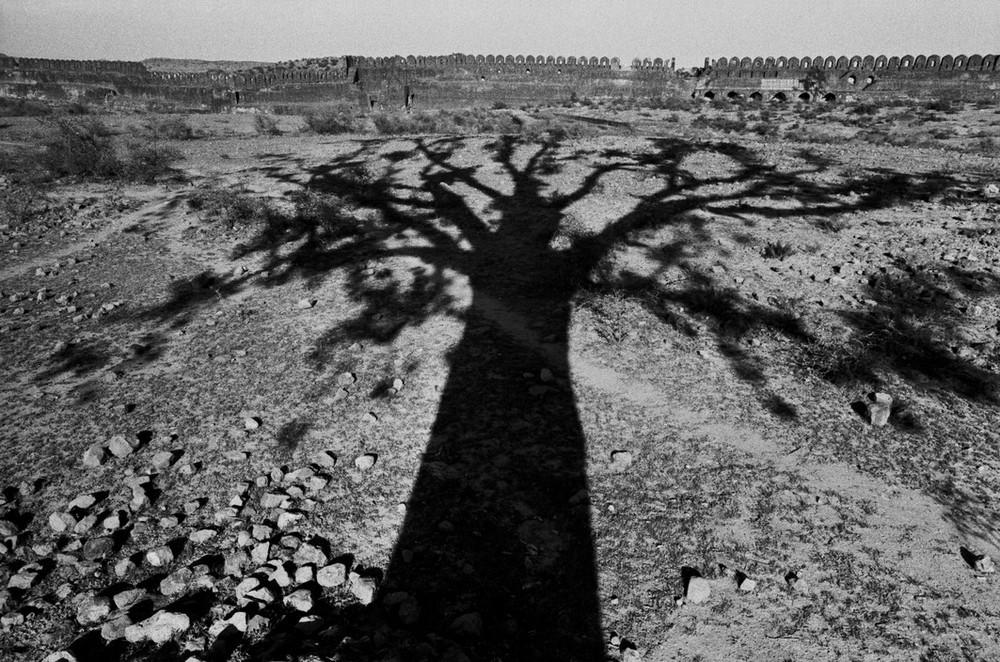 Рене Бурри: «Я никогда не думал, что стану фотографом» 31
