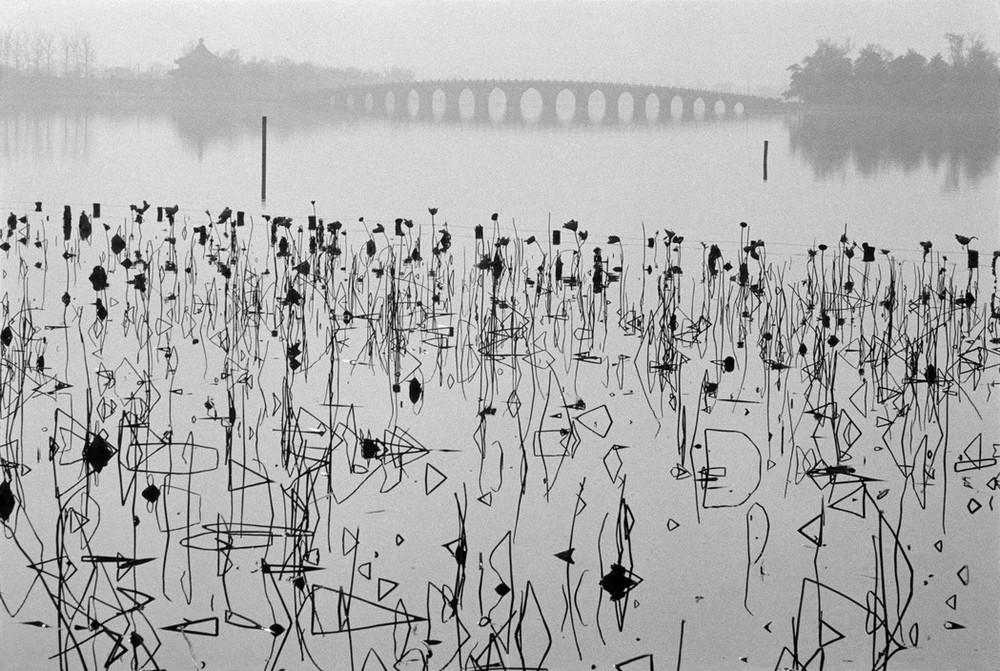 Рене Бурри: «Я никогда не думал, что стану фотографом» 34