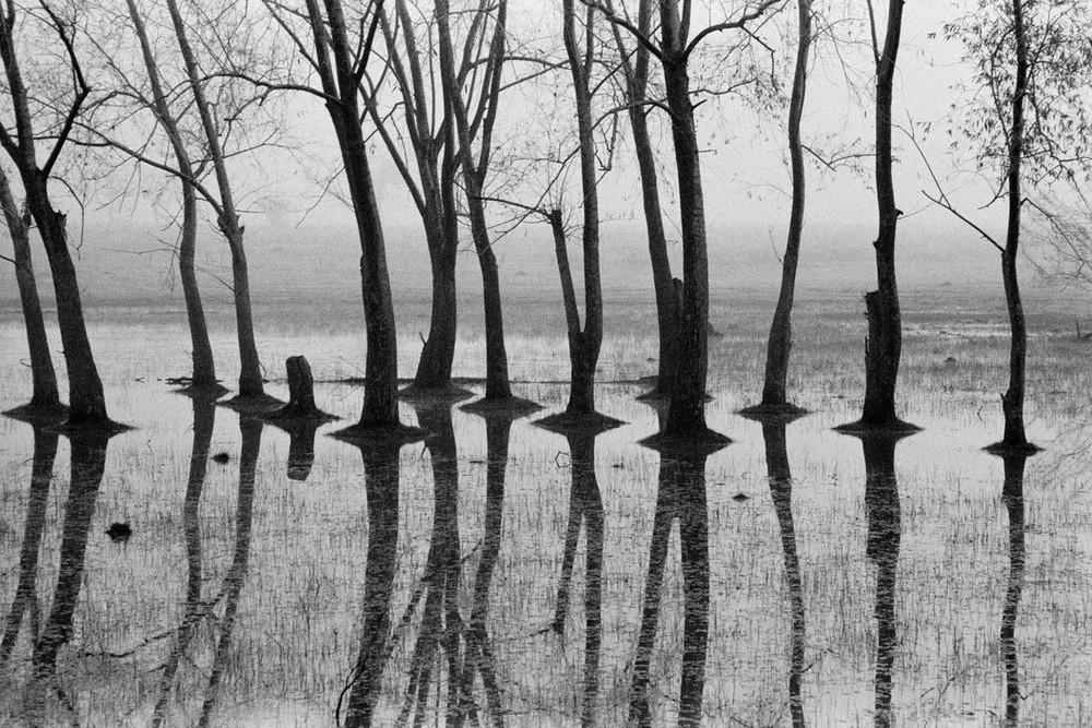 Рене Бурри: «Я никогда не думал, что стану фотографом» 53