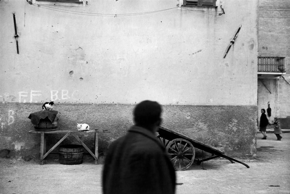 Рене Бурри: «Я никогда не думал, что стану фотографом» 6