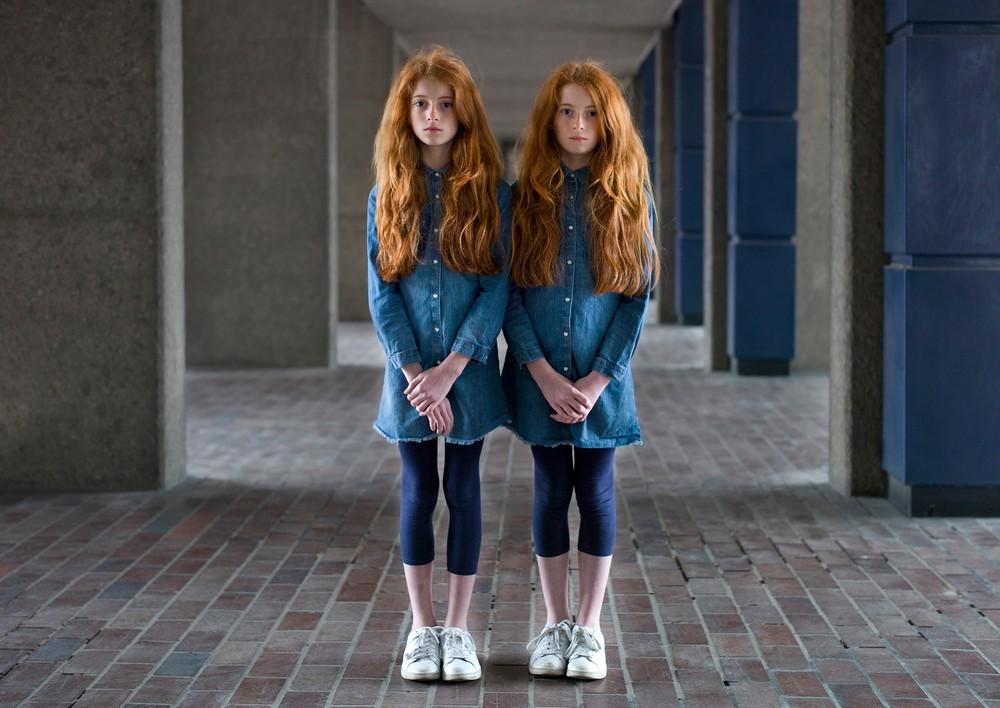 картинки такие разные близнецы занимаемся изготовлением встраиваемых