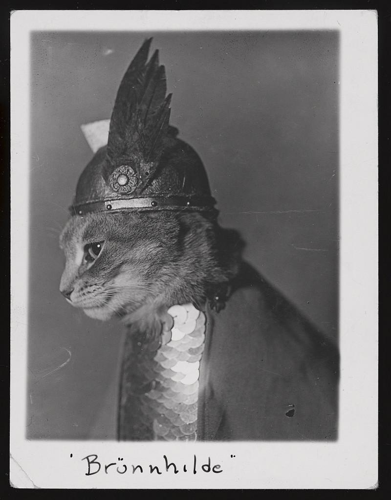 Библиотека Конгресса США выложила тысячи фотографий, плакатов и гравюр в открытый доступ  1