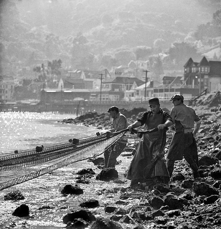 San-Frantsisko-ulichnye-fotografii-1940-50-godov-Freda-Liona 53