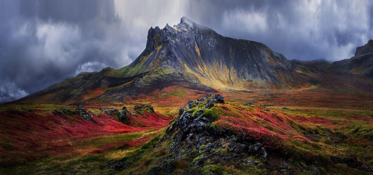 Красота природы глазами победителей конкурса Siena International Photography Awards 2018 12