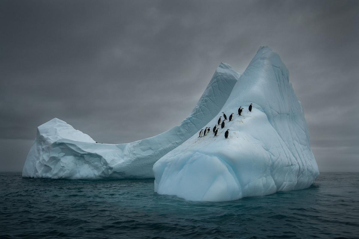 Красота природы глазами победителей конкурса Siena International Photography Awards 2018 3