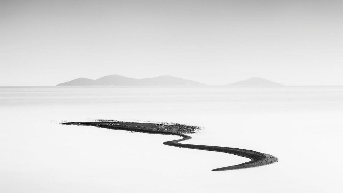 Победители конкурса «Европейский фотограф природы 2018 года»  10