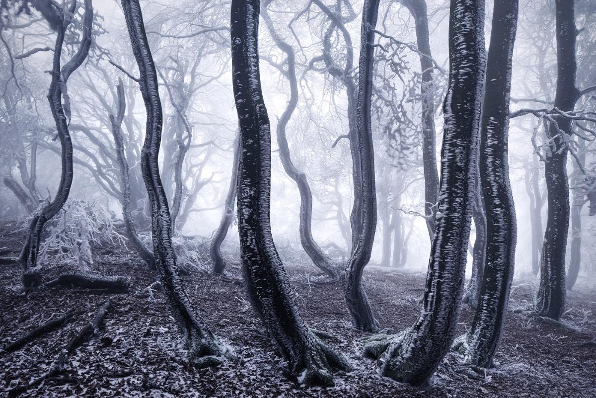 zimnie-peyzazhi-fotograf-Kilian-Shoenberger 13