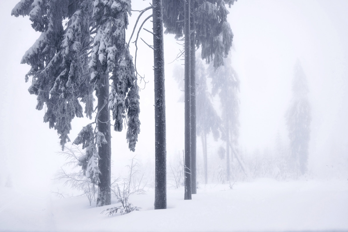 zimnie-peyzazhi-fotograf-Kilian-Shoenberger 15