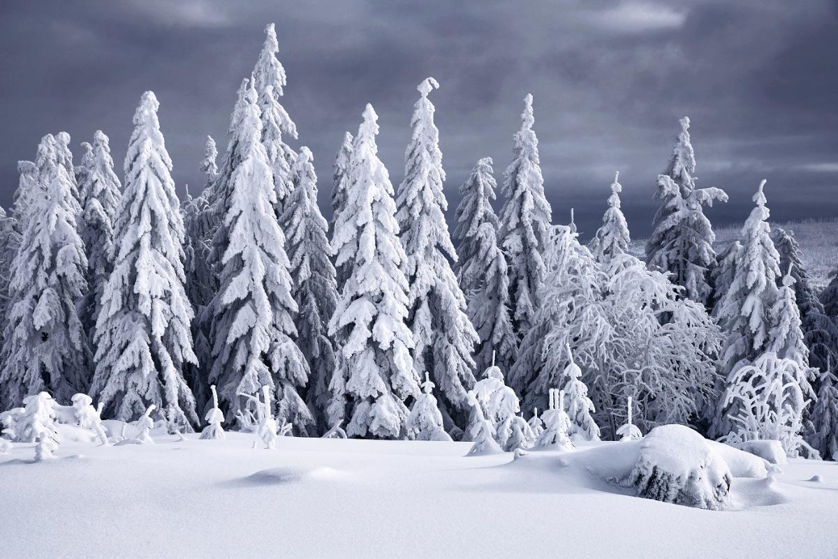 zimnie-peyzazhi-fotograf-Kilian-Shoenberger 16