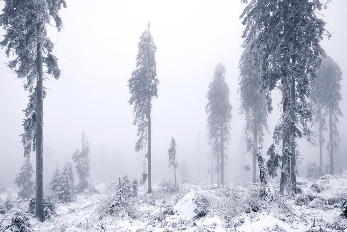 zimnie-peyzazhi-fotograf-Kilian-Shoenberger 19