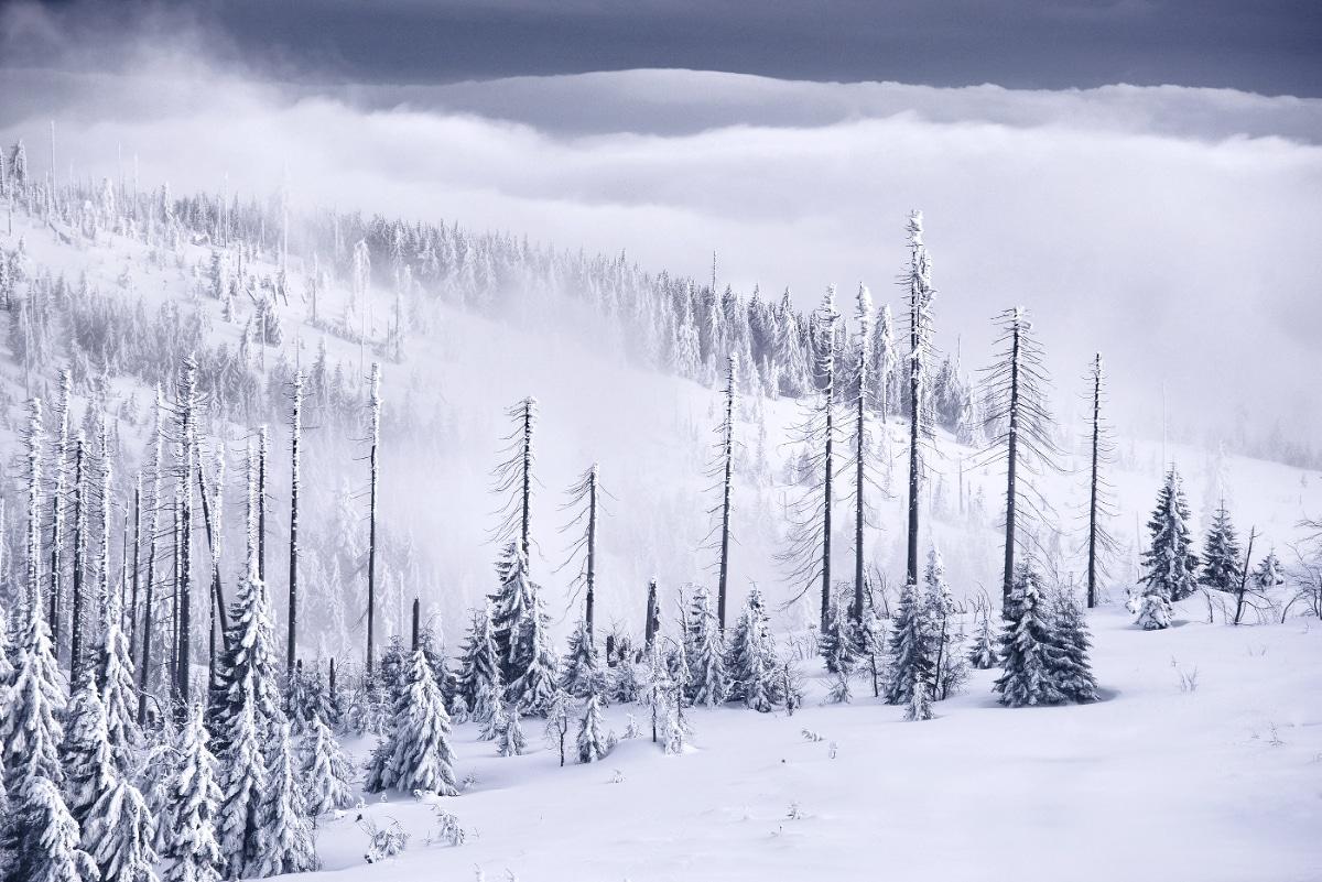 zimnie-peyzazhi-fotograf-Kilian-Shoenberger 28