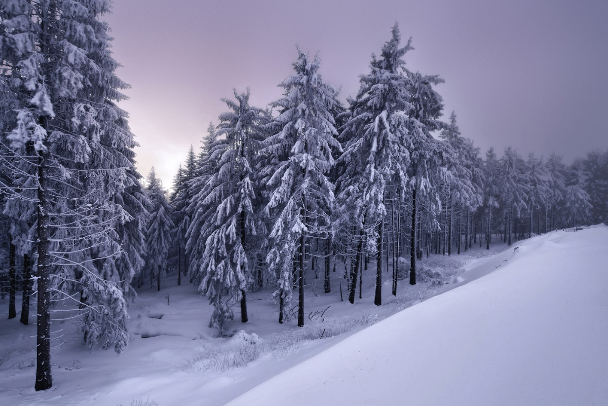 zimnie-peyzazhi-fotograf-Kilian-Shoenberger 4