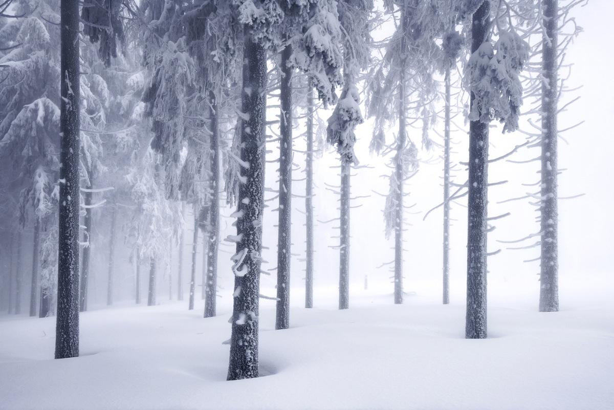 zimnie-peyzazhi-fotograf-Kilian-Shoenberger 7