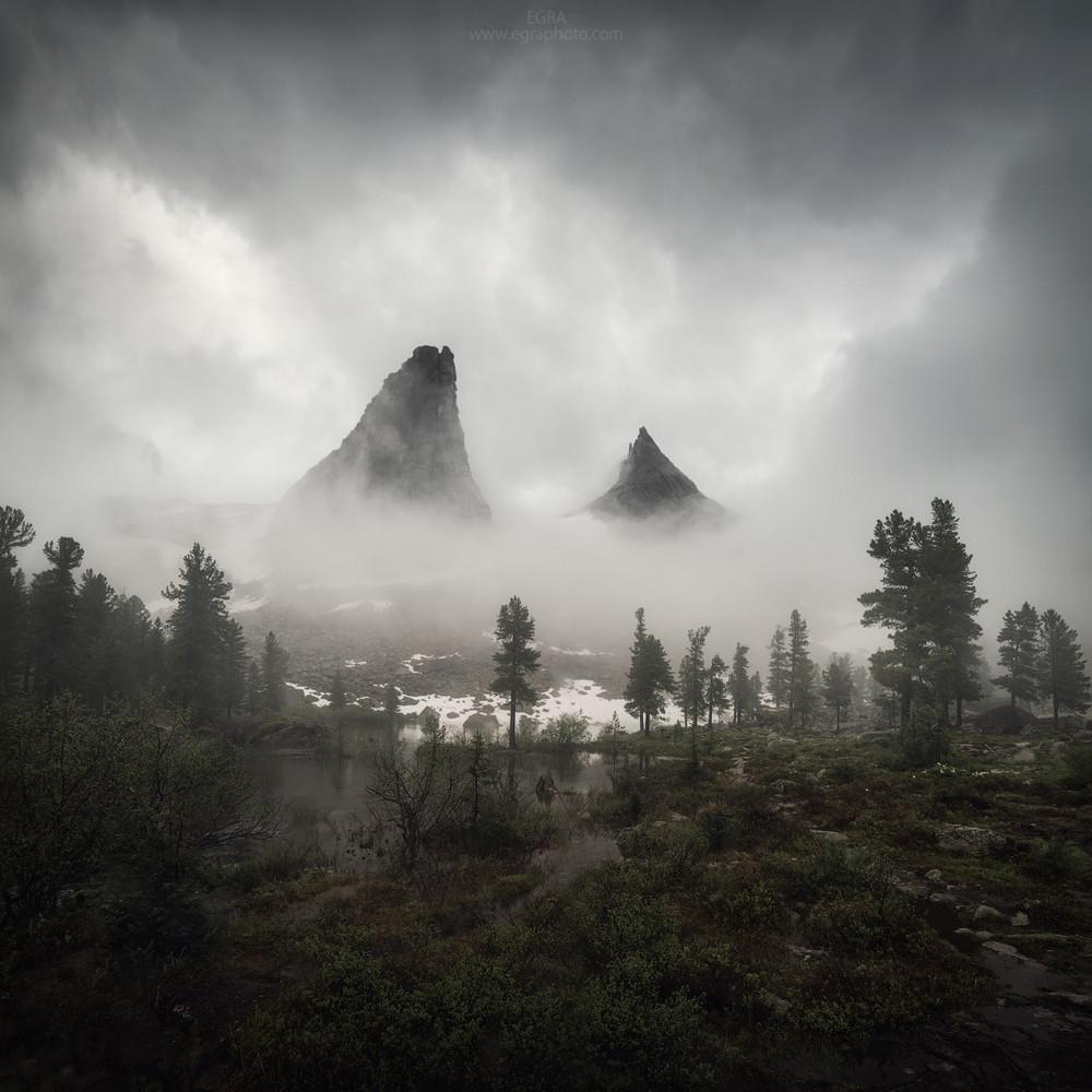 Победители и фавориты фотоконкурса «Дикая природа России – 2018» 25