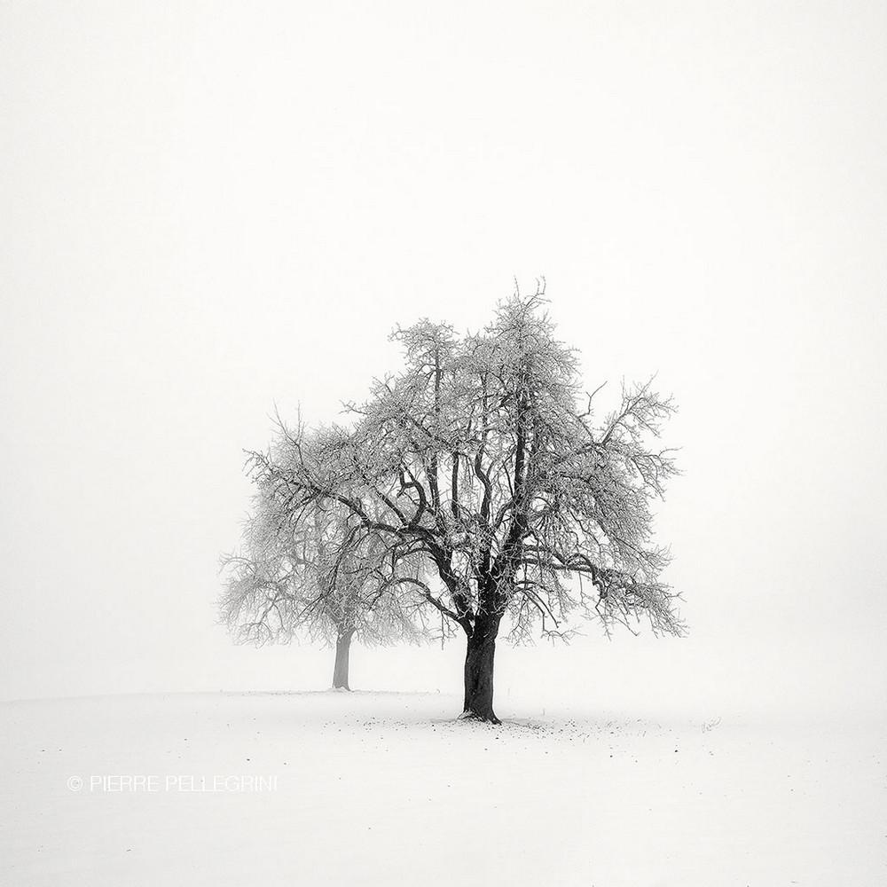Cherno-belye-peyzazhnye-fotografii-Pera-Pellegrini 25