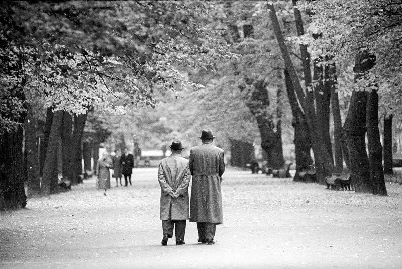 Великие, простые, красивые: люди на снимках советского фотографа Александра Стешанова 16
