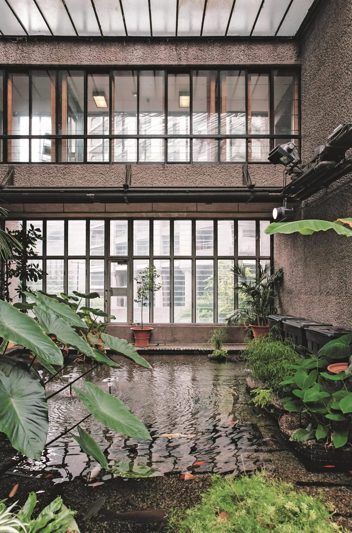 «Дуэт фотографов путешествует по миру, снимая ботанические сады, оранжереи и теплицы 5