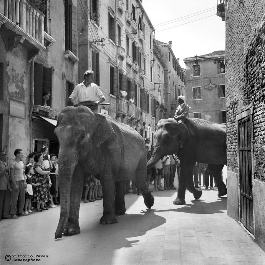 Редкие фотографии извесÑ'Ð½Ñ‹Ñ Ð»ÑŽÐ´ÐµÐ¹, отдыÑÐ°ÑŽÑ‰Ð¸Ñ Ð² Венеции в 1950-60-е годы 24