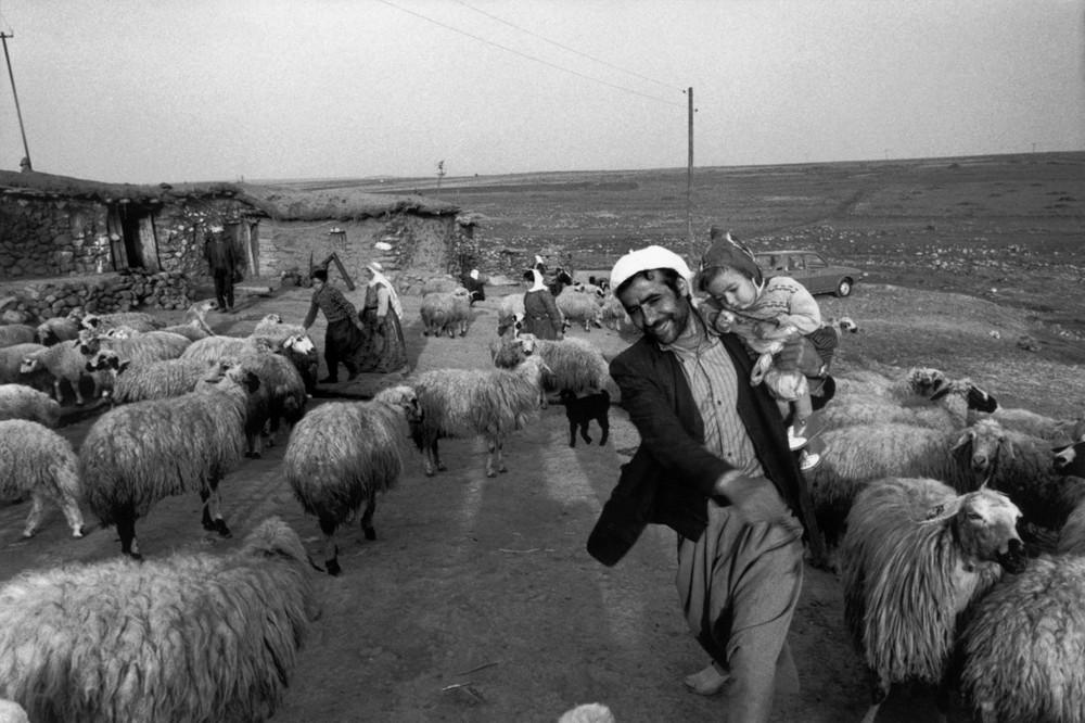 Репортаж с пристрастием. Греческий фотограф Никос Экономопулос 39