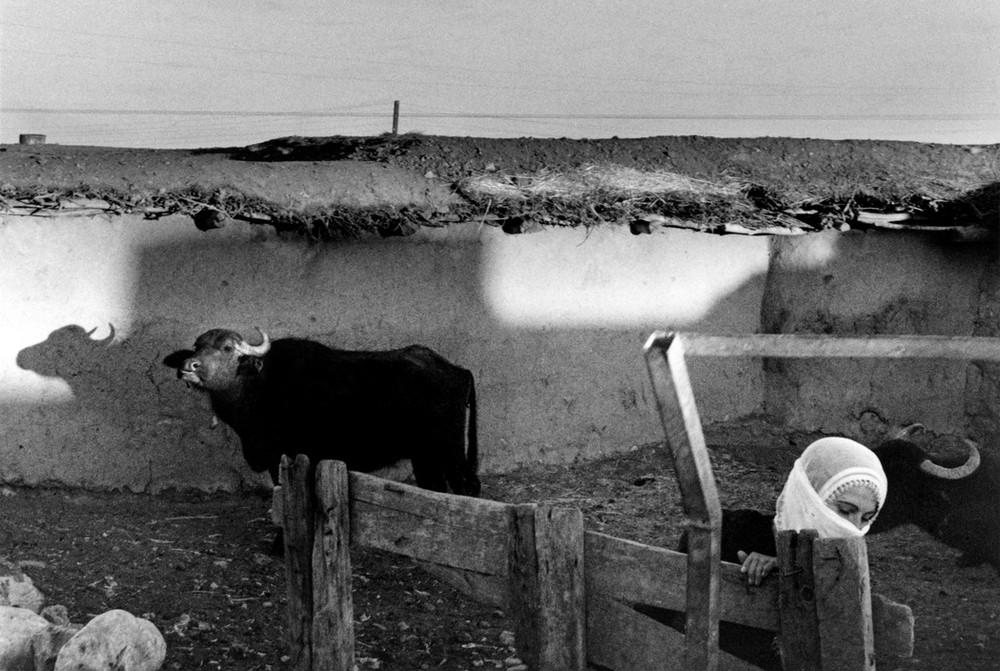 Репортаж с пристрастием. Греческий фотограф Никос Экономопулос 61