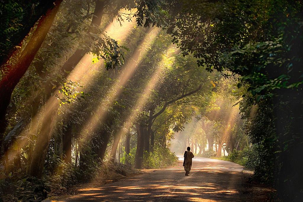 Красота планеты в работах победителей фотоконкурса «Вики любит Землю – 2018» 3