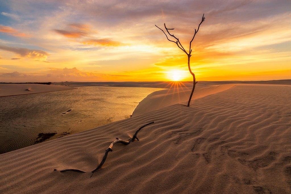 Красота планеты в работах победителей фотоконкурса «Вики любит Землю – 2018»  7