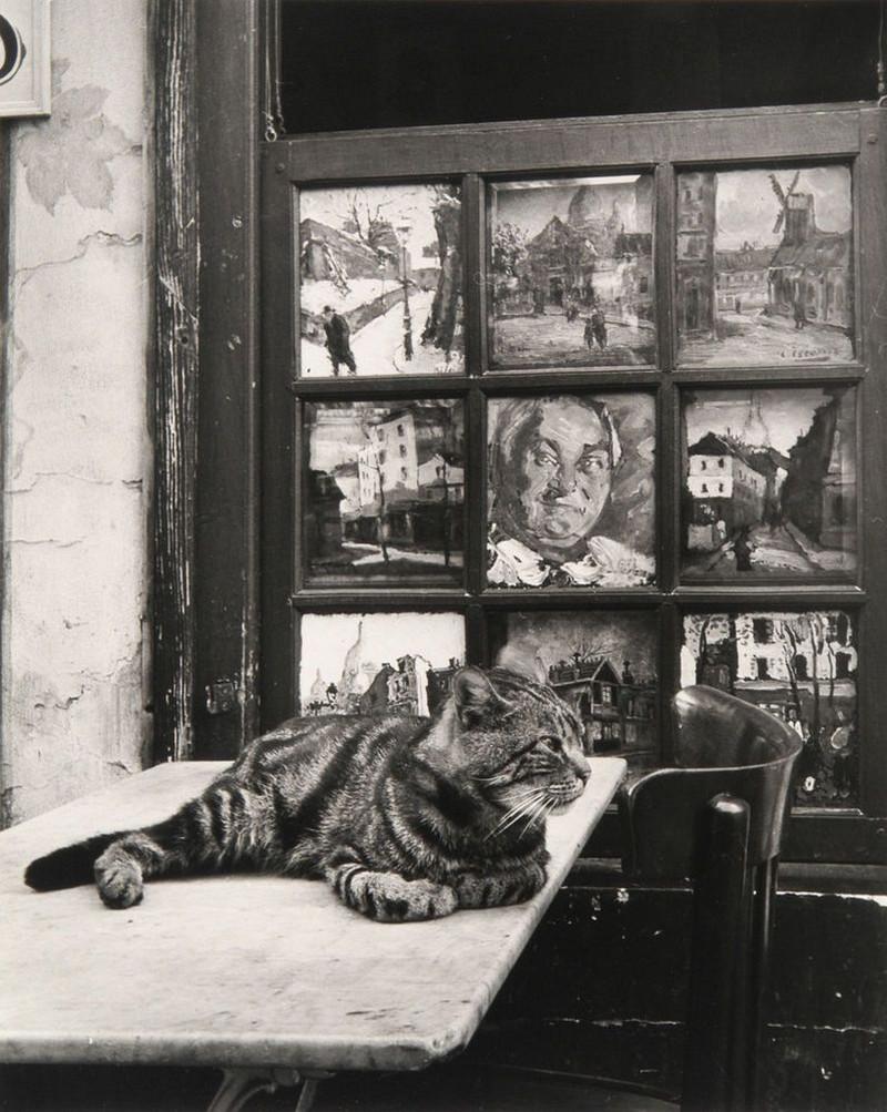fotograf Izis Bidermanas Parizh 18